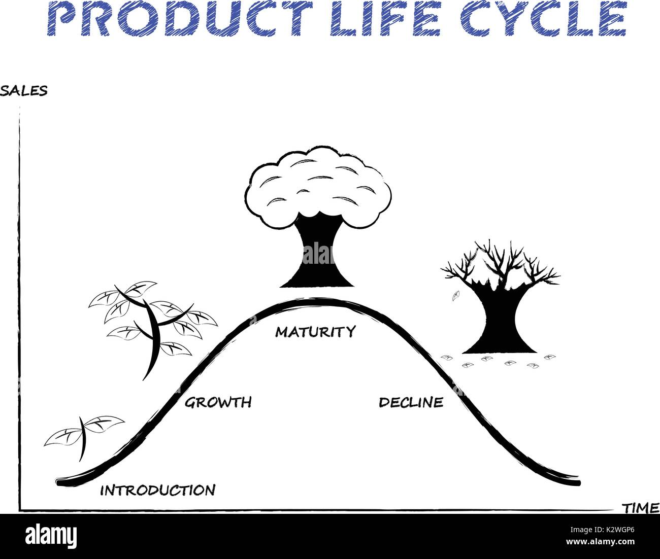 Black White Product Life Cycle Diagram Is Drew By Pencil