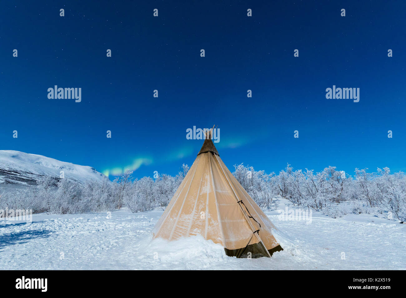 Isolated Sami tent in the snow under Northern Lights, Abisko, Kiruna Municipality, Norrbotten County, Lapland, Sweden - Stock Image