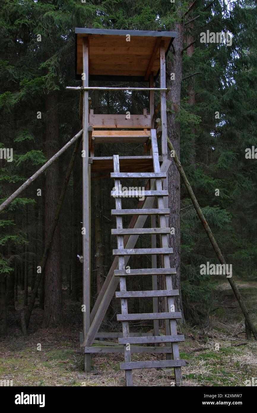 Wald, Forst, Holz, Natur, Baeume, Jagd, Jaeger, Jaegerstand - Stock Image