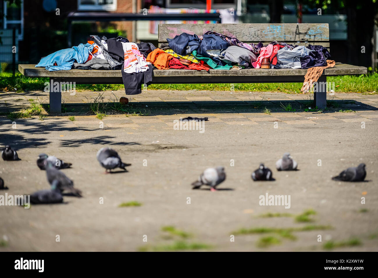 Bench with clothes in the Mueggenburger port of entry in Veddel, Hamburg, Germany, Europe, Sitzbank mit Kleidung am Mueggenburger Zollhafen in Veddel, - Stock Image