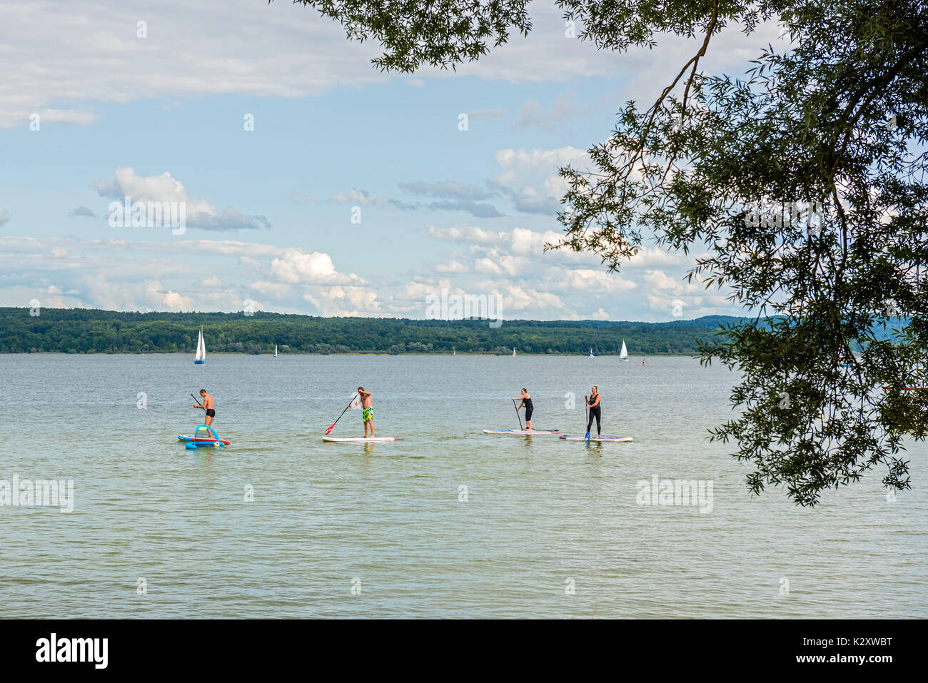 SUP Polo at Utting, Ammersee, Bavaria, Germany - Stock Image