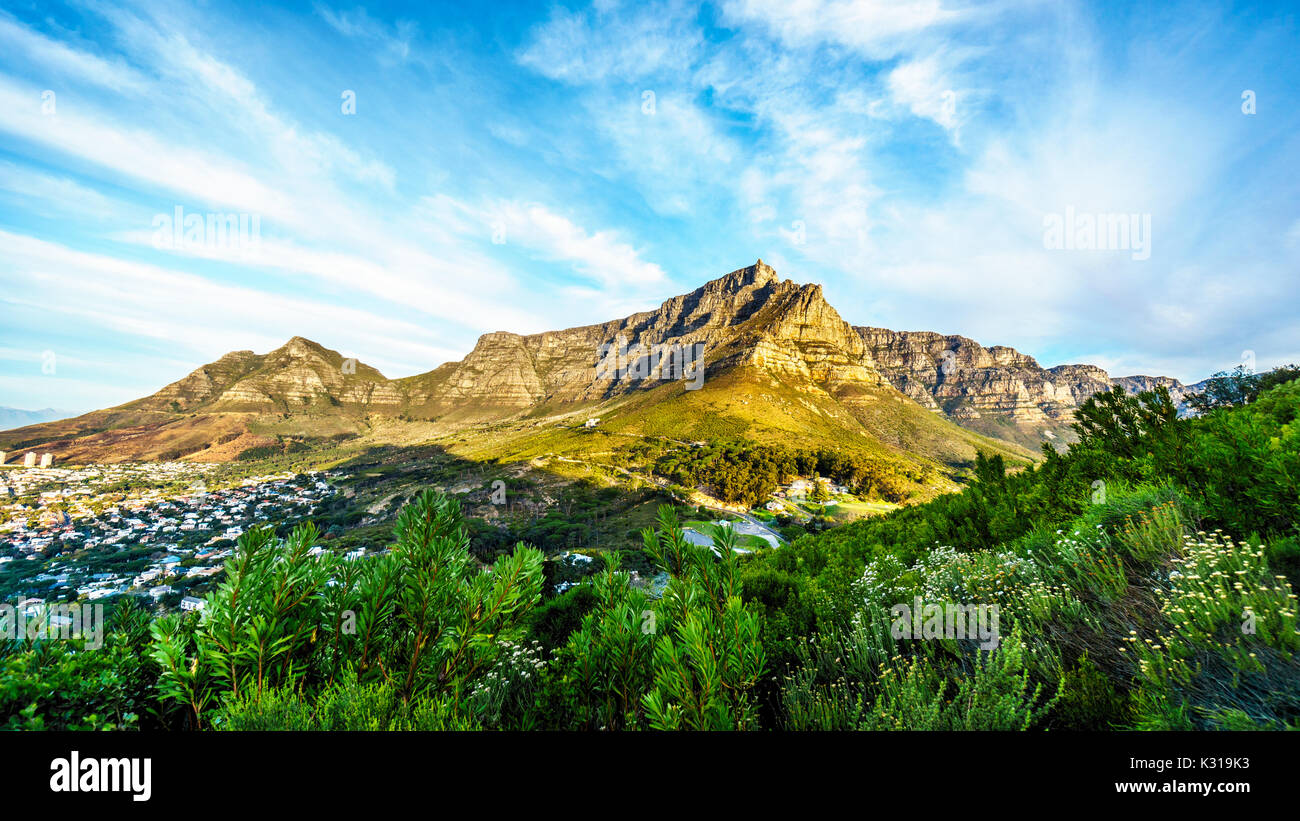 View of Table Mountain, Devils Peak and the Twelve Apostles from the hiking trail to the top of Lions Head mountain near Cape Town South Africa on a n - Stock Image