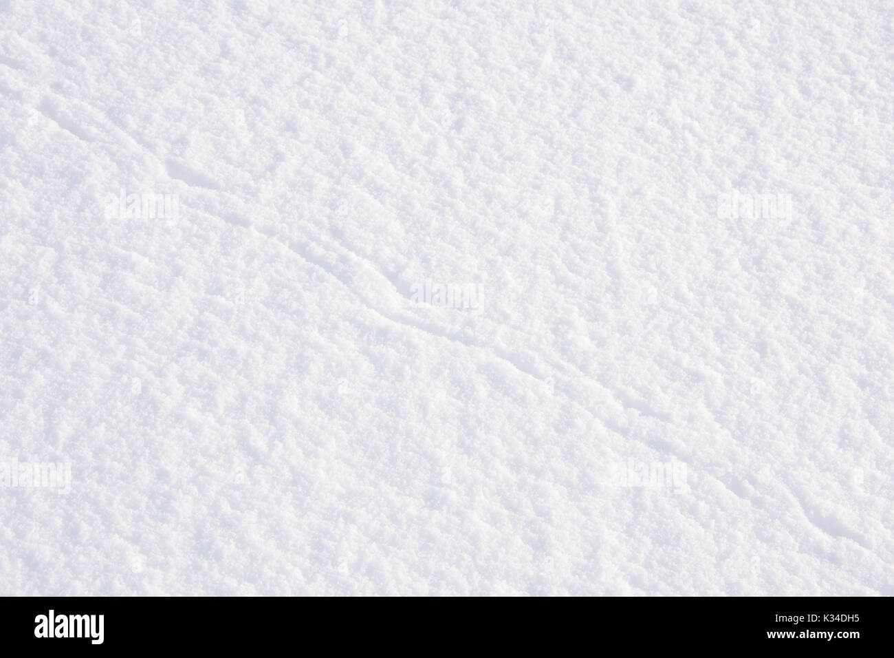 Background of snow with animal tracks - Stock Image
