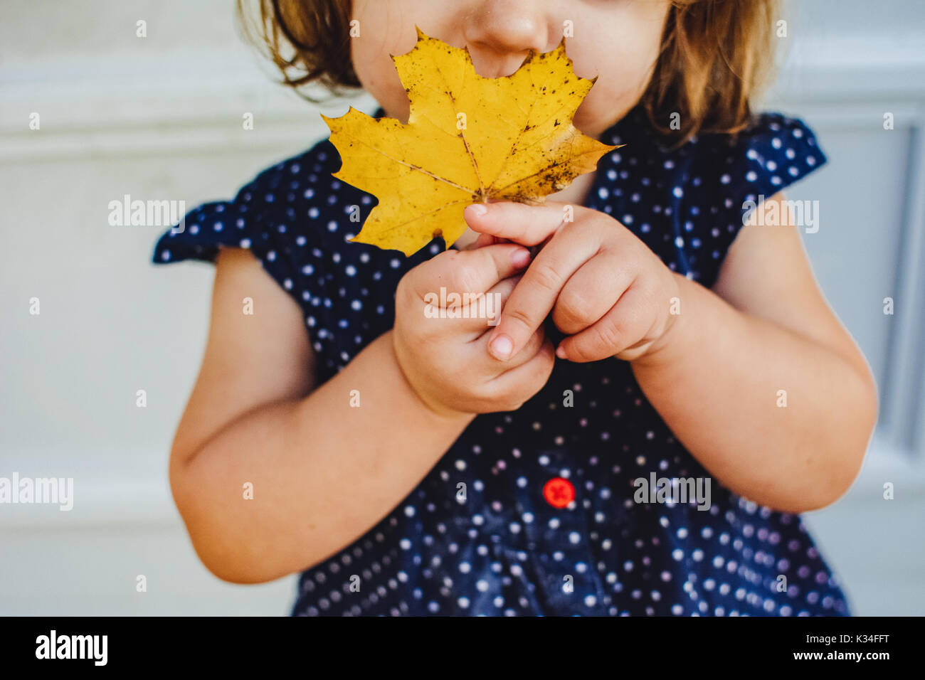 A little girl holds an yellow leaf - Stock Image