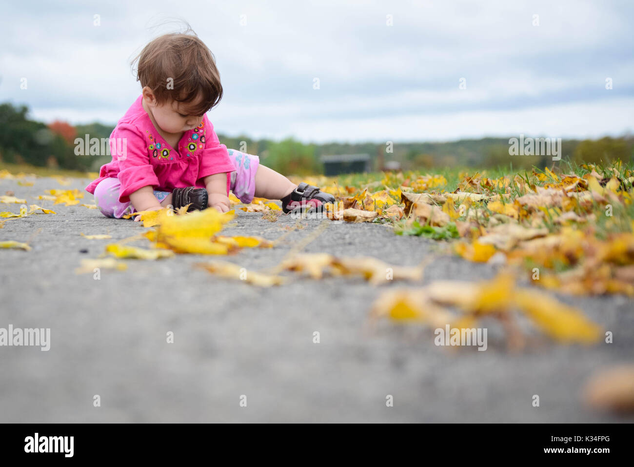 Child sitting among autumn colored leaves - Stock Image