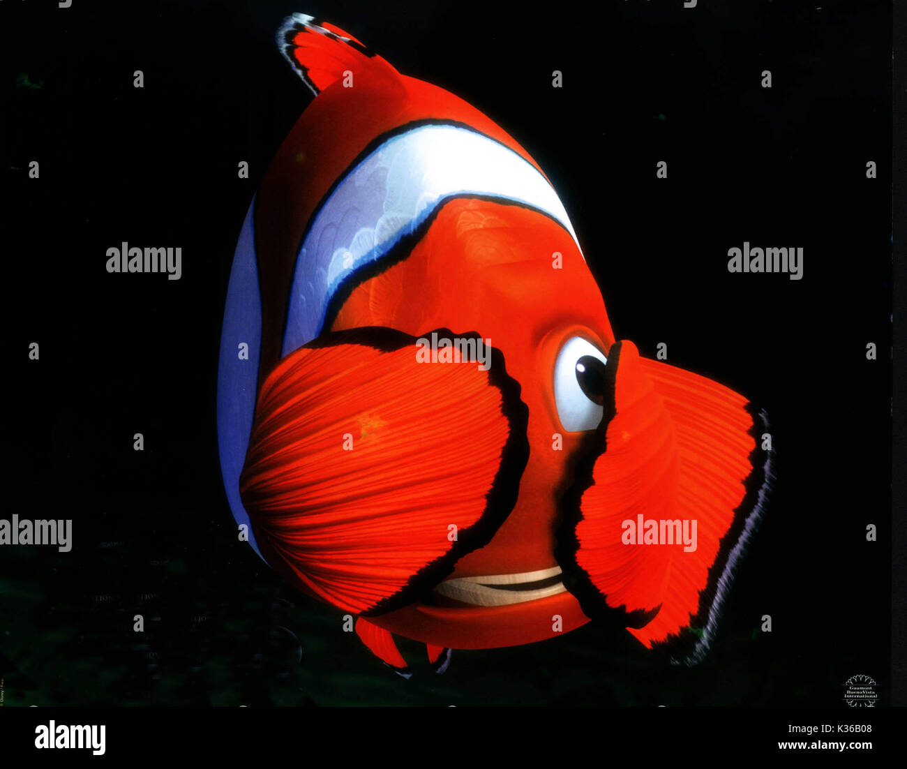 Finding Nemo Marlin Stock Photos & Finding Nemo Marlin Stock Images ...