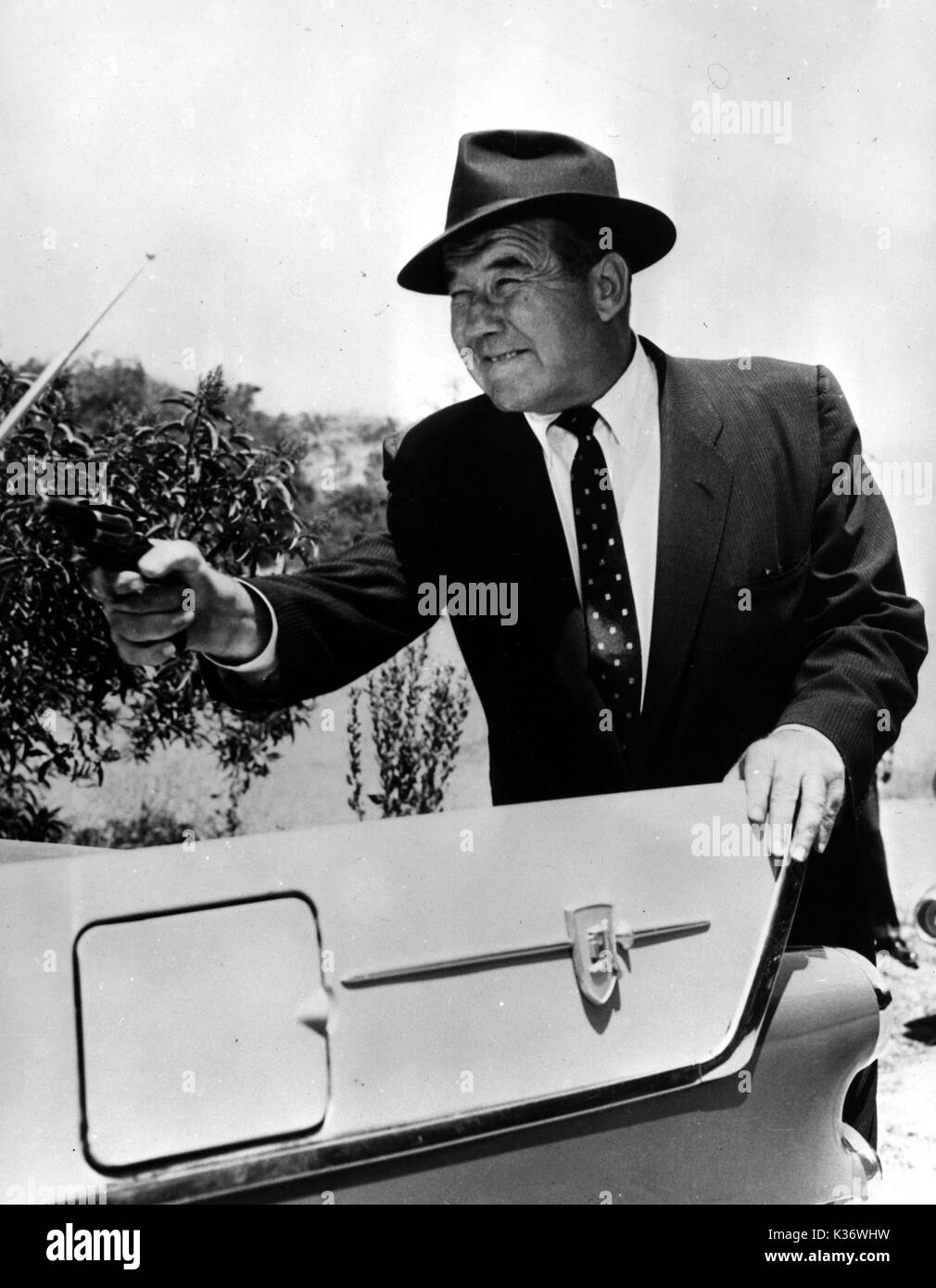 broderick crawford movies and tv shows