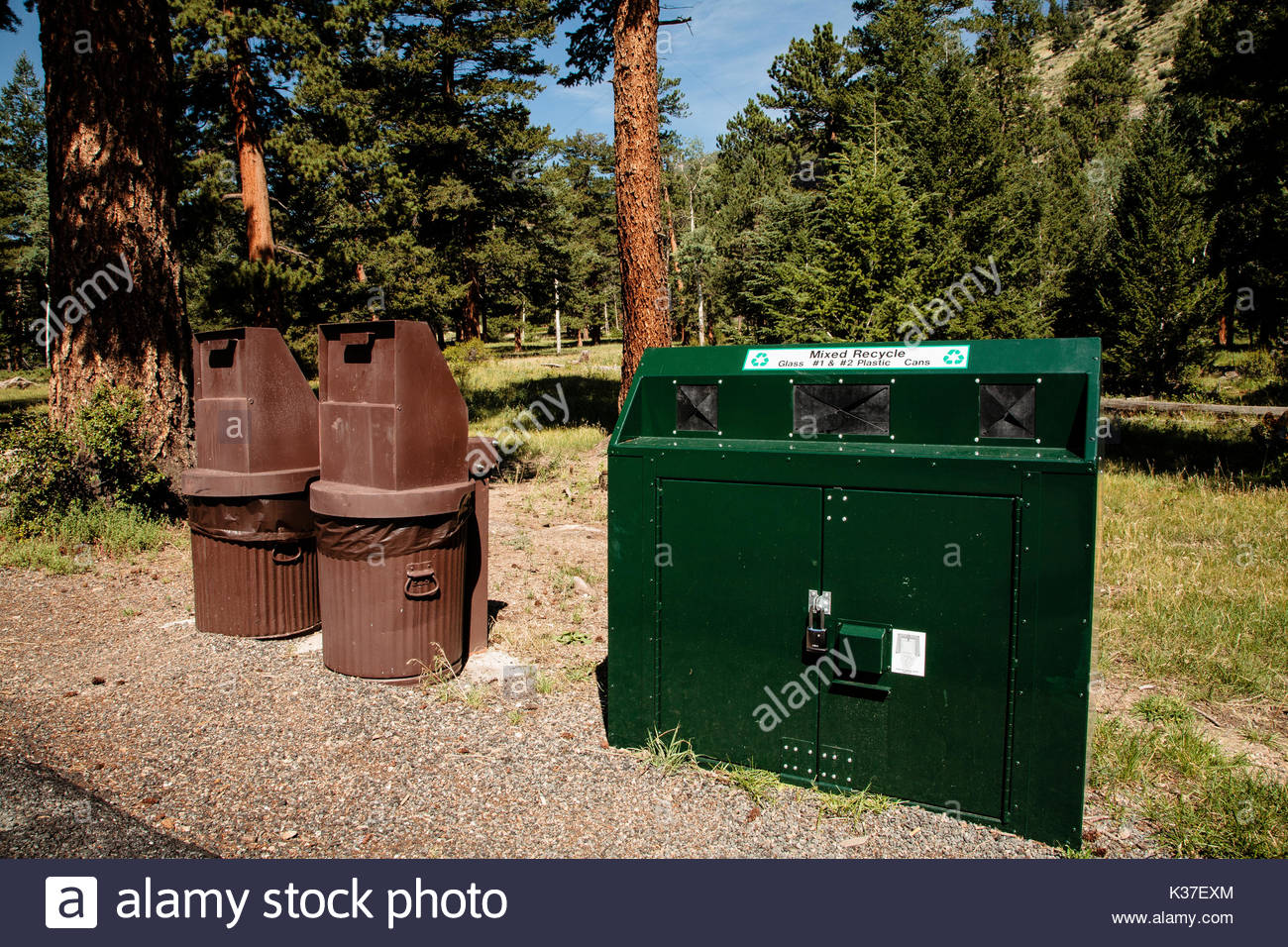 Bear-proof garbage cans and recycling center in Rocky