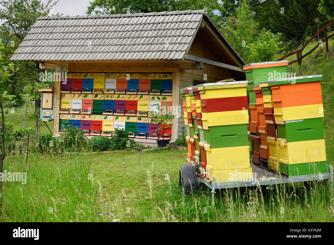 Colorful traditionally painted apiary beehive house and boxes at Kralov Med in Selo near Bled Slovenia in Spring - Stock Image