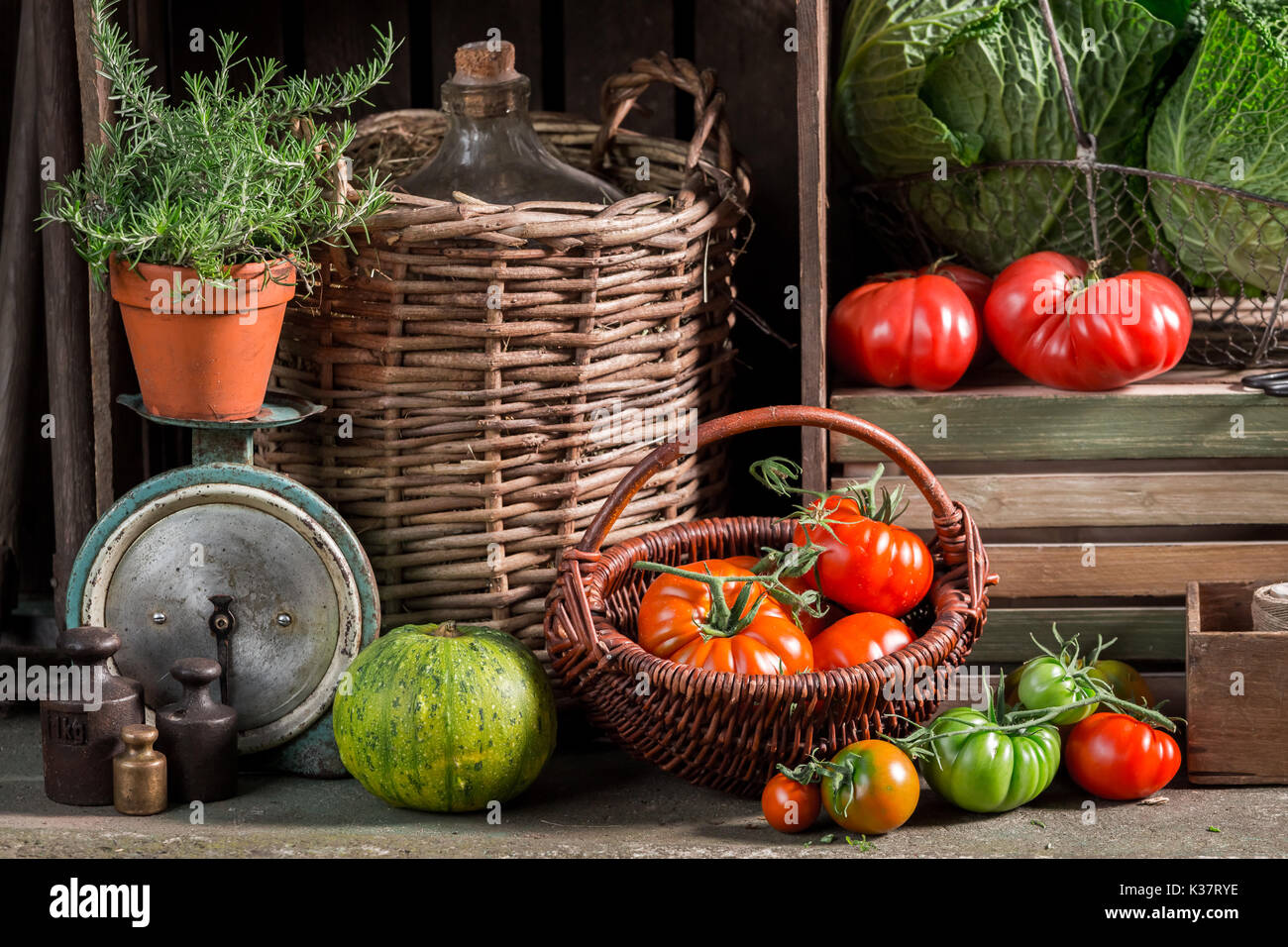 Vintage cellar with harvested vegetables and fruits - Stock Image