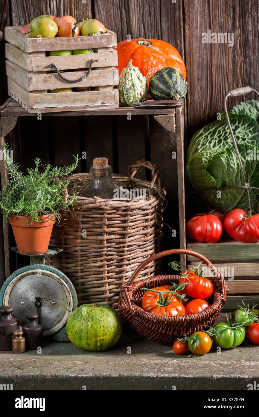 Vintage pantry with harvested vegetables and fruits - Stock Image