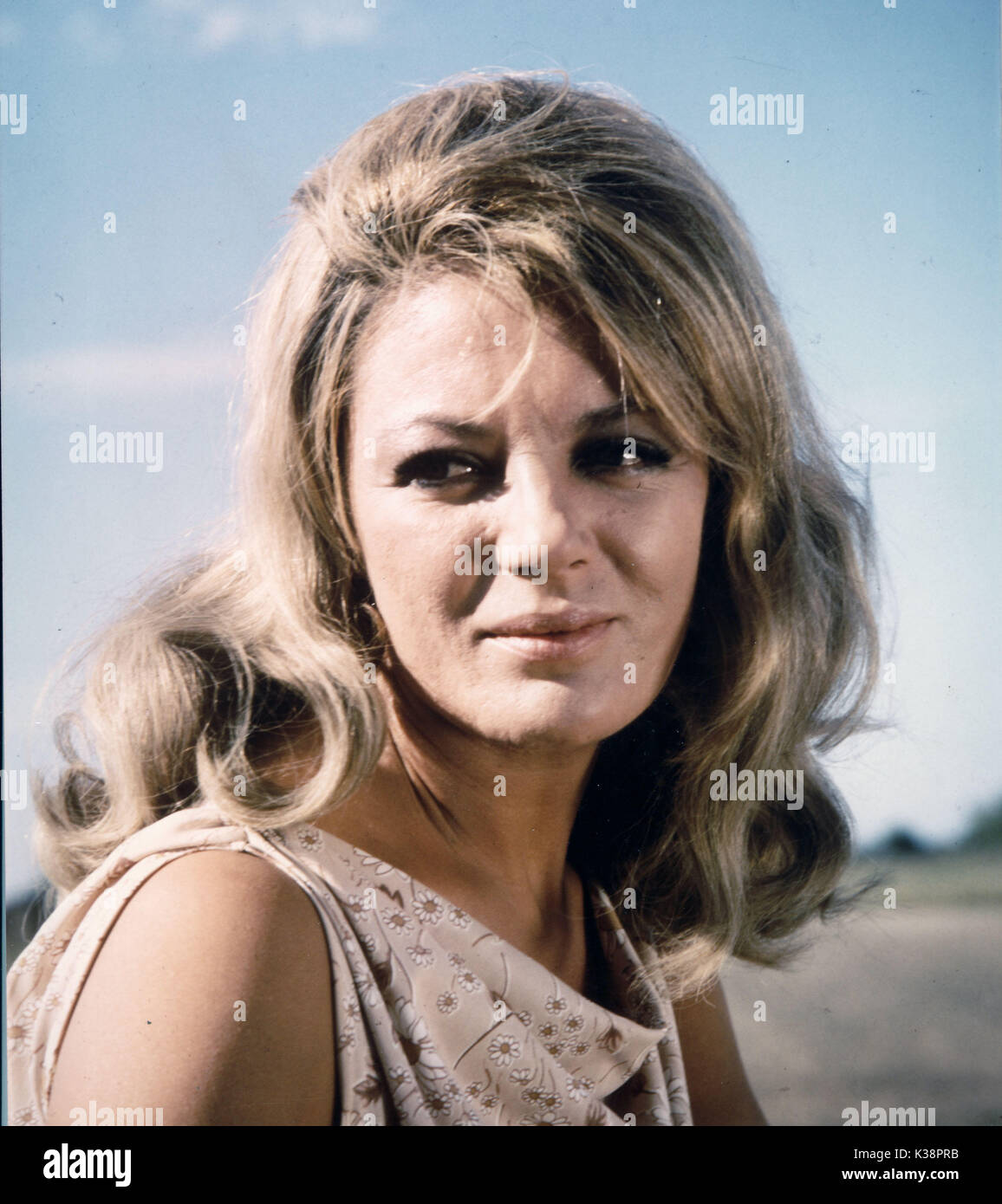 picture Sheree North