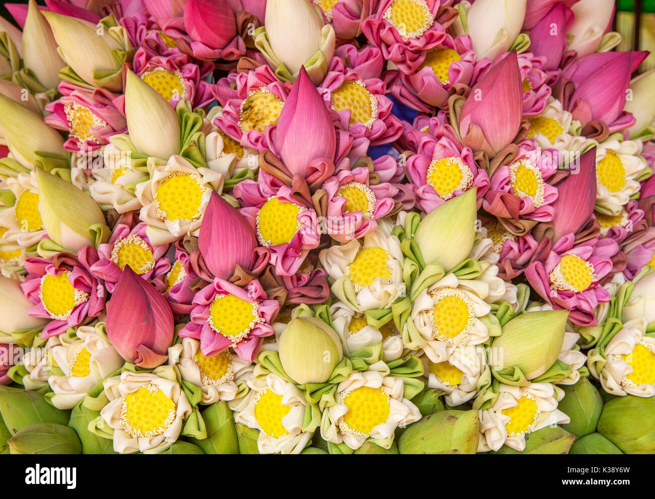 Close up of a beautiful flower arrangement made of pink and white close up of a beautiful flower arrangement made of pink and white banana flower blossoms and seed heads for sale in siem reap cambodia izmirmasajfo