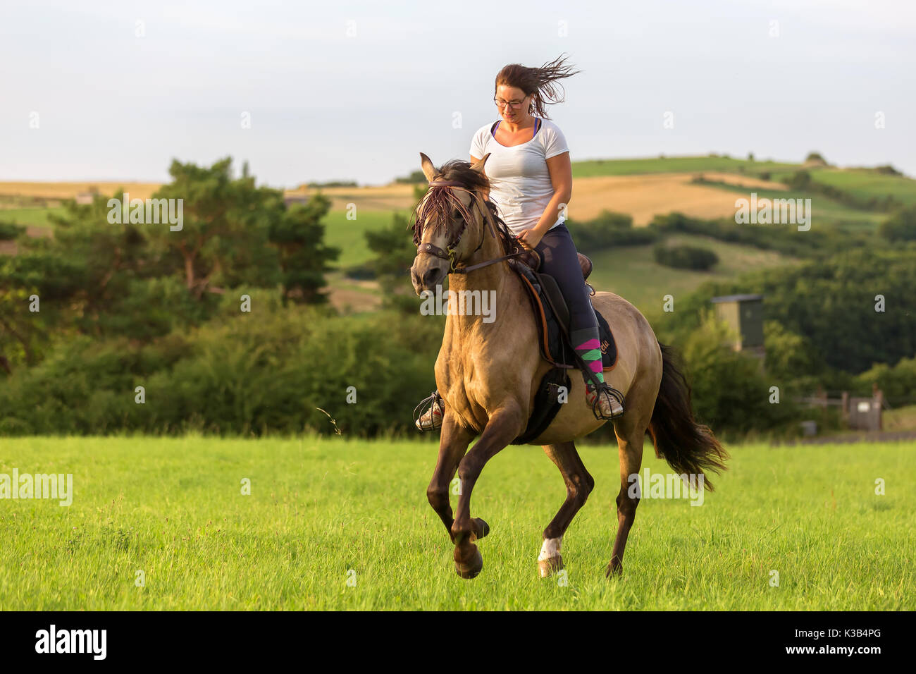 woman rides an Andalusian horse in the fields - Stock Image