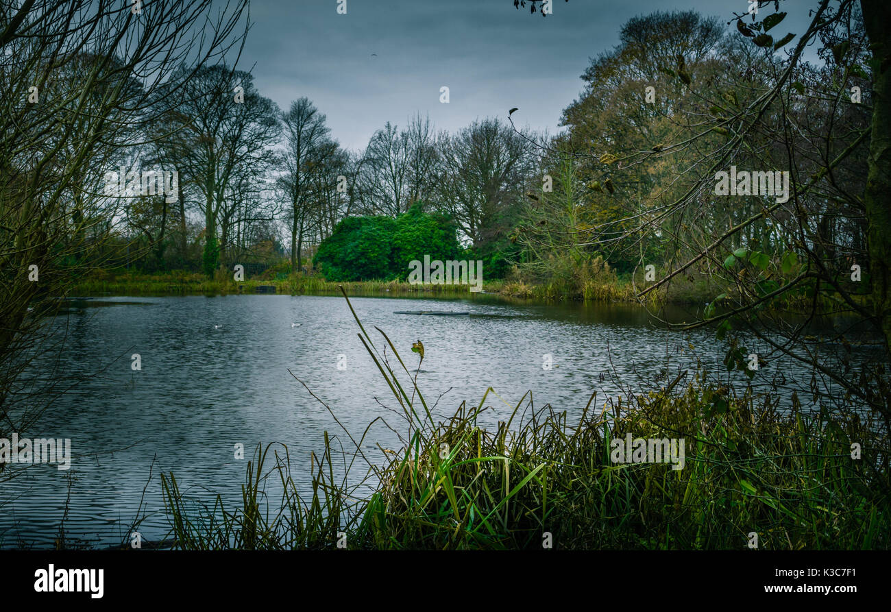 Leg-o-Mutton fishing lake in St Helens, Merseyside Stock Photo