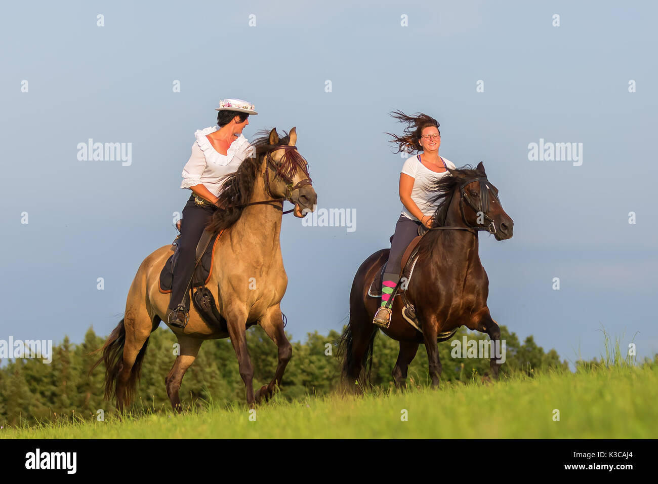 two women ride Andalusian horses in the fields - Stock Image