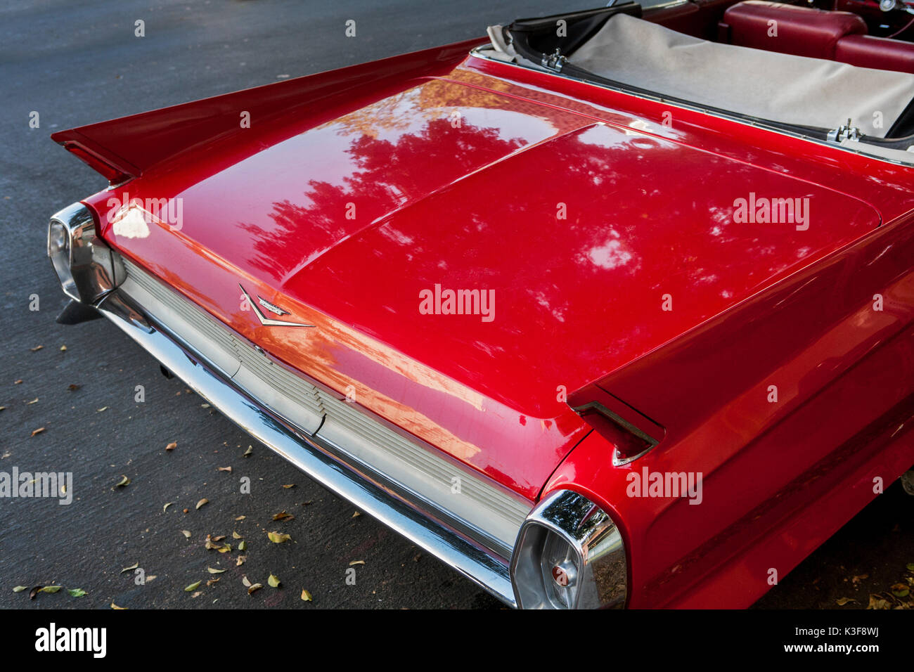Trunk of Old Cadillac Convertible Car - Stock Image
