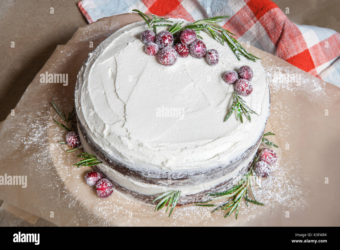 Chocolate Layer Cake with vanilla Buttercream Icing and Candied Cranberries - Stock Image