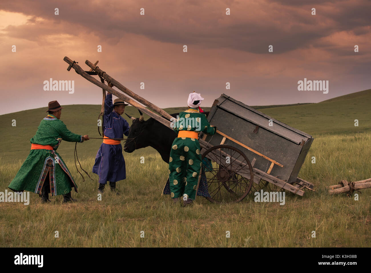 Inner Mongolia, China-July 31, 2017: Nomadic people of Mongolia prepare the cow cart in grassland. - Stock Image