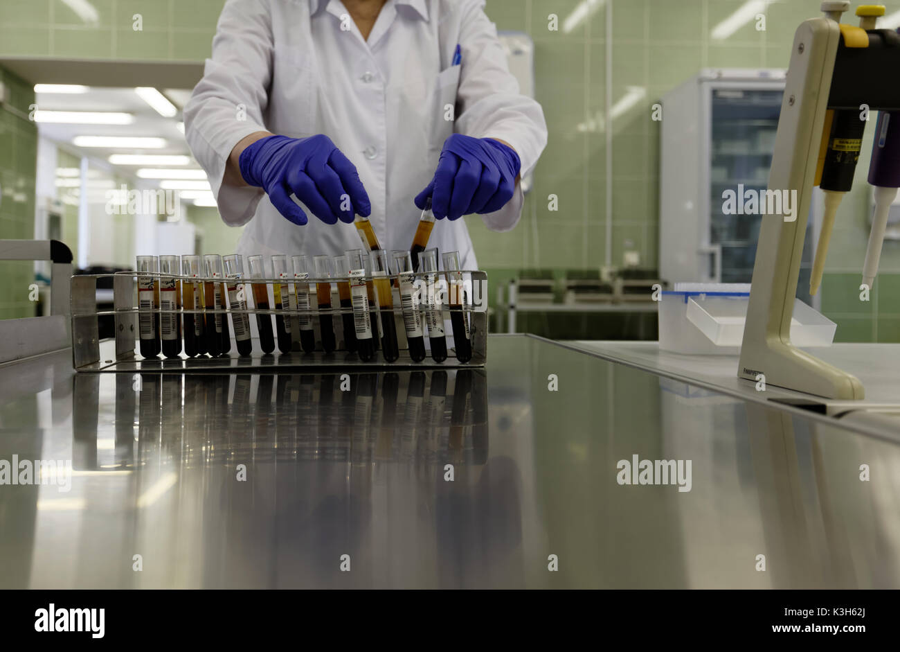 St. Petersburg, Russia - February 20, 2017: Laboratory worker collects the blood samples in the city blood transfusion station. This year the station  - Stock Image