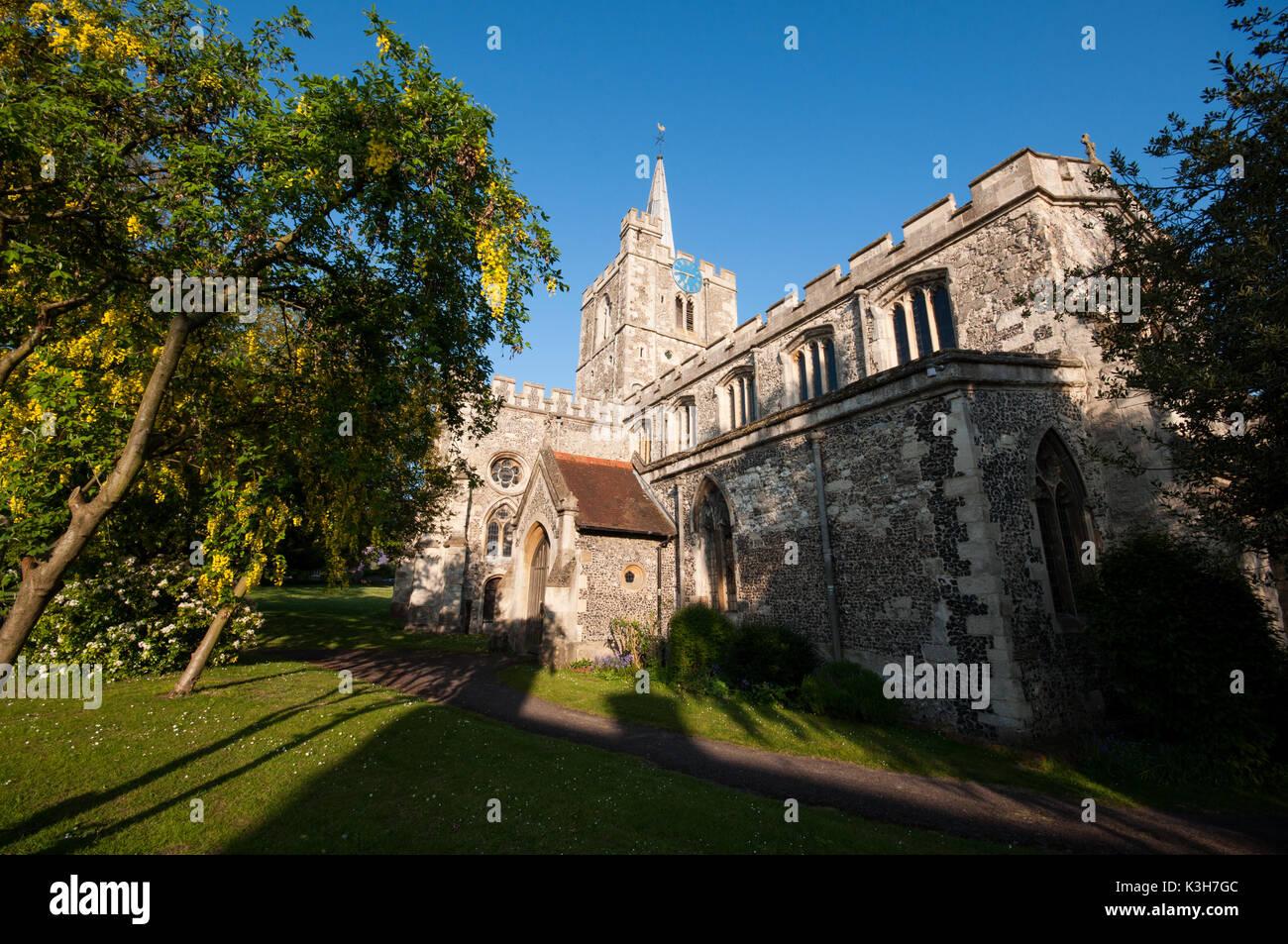 St Mary the Virgin Parish Church, Ivinghoe, Buckinghamshire - Stock Image