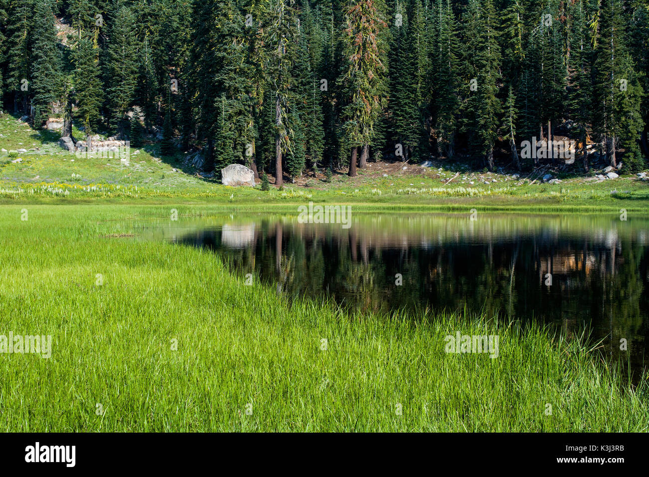 Panoramic view of Cold Boiling Lake at Lassen Volcanic National Park, California, USA, where cold gases bubble up the water - Stock Image