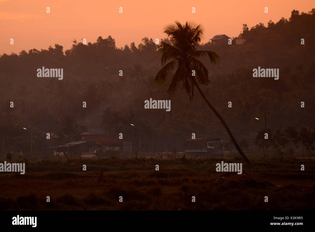 the landscape in the morning in a village near the city of Myeik in the south in Myanmar in Southeastasia. Stock Photo