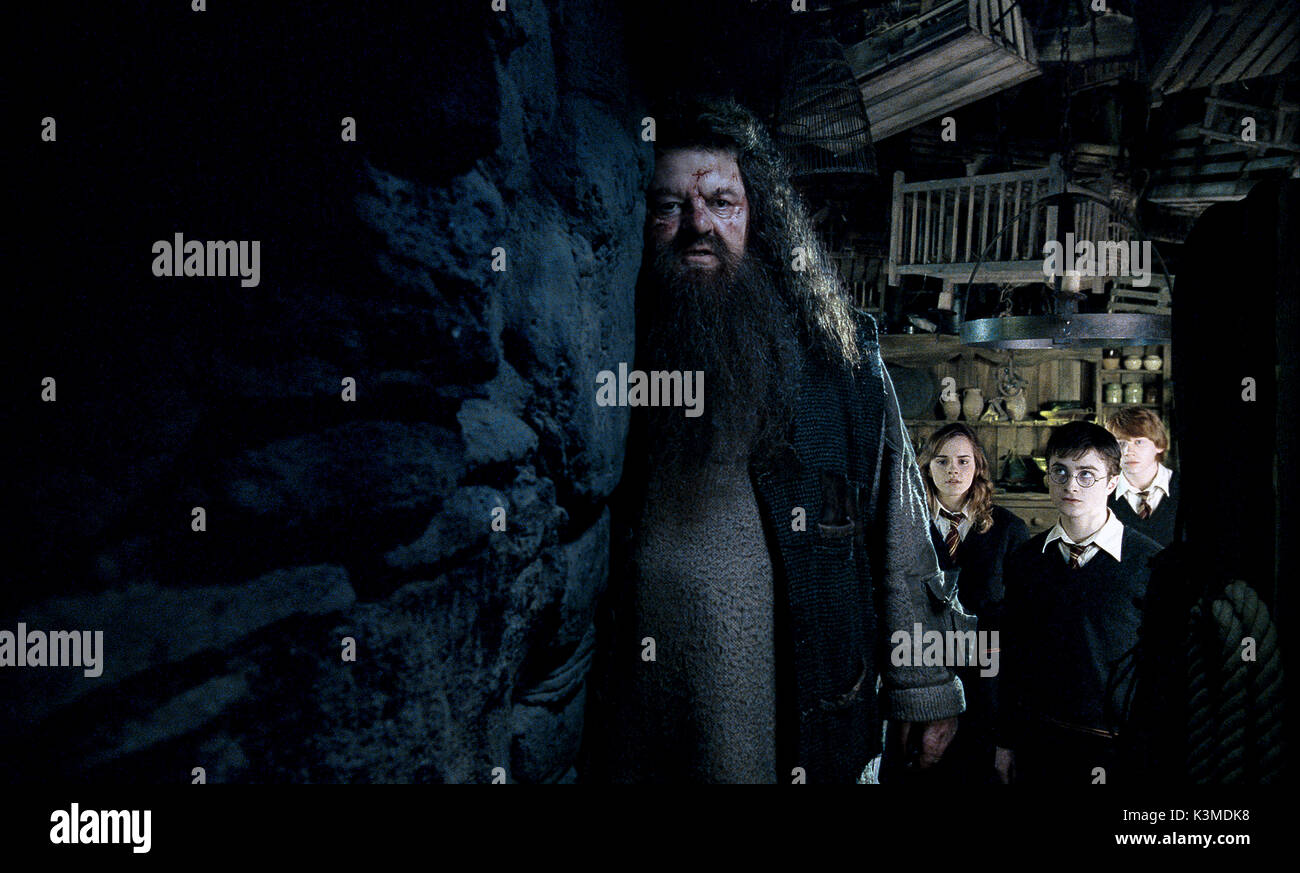 HARRY POTTER AND THE ORDER OF THE PHOENIX [US / BR 2007] [L-R] ROBBIE COLTRANE as Rubeus Hagrid, EMMA WATSON as Hermione Granger, DANIEL RADCLIFFE as Harry Potter, RUPERT GRINT as Ron Weasley     Date: 2007 - Stock Image