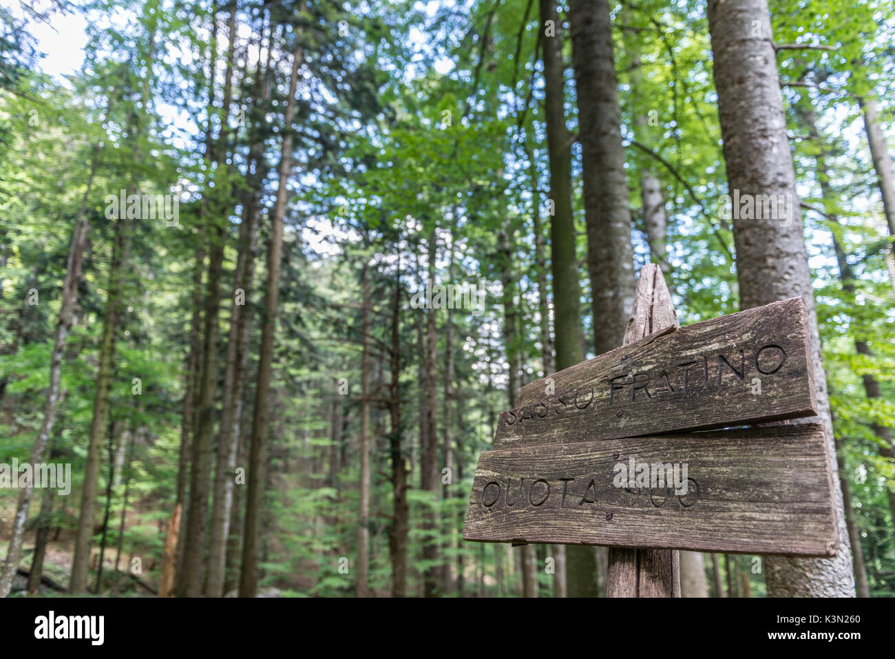 Signboard of Quota 900, the hearth of Sasso Fratino Integral Natural Reserve, Emilia Romagna district, Italy - Stock Image