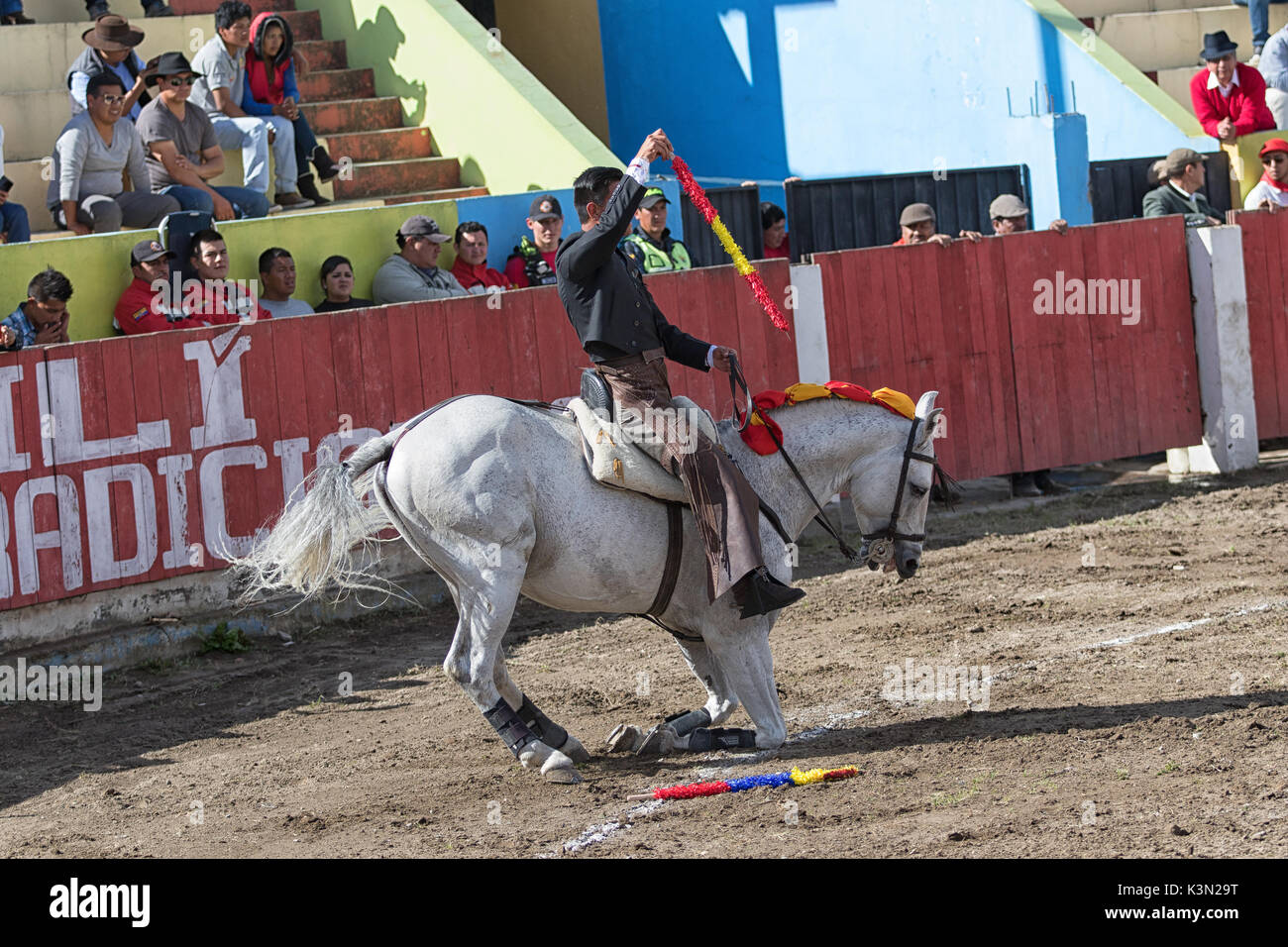 June 18, 2017, Pujili, Ecuador: bullfighter in the arena brings is horse to its knees as a salute to the spectators Stock Photo