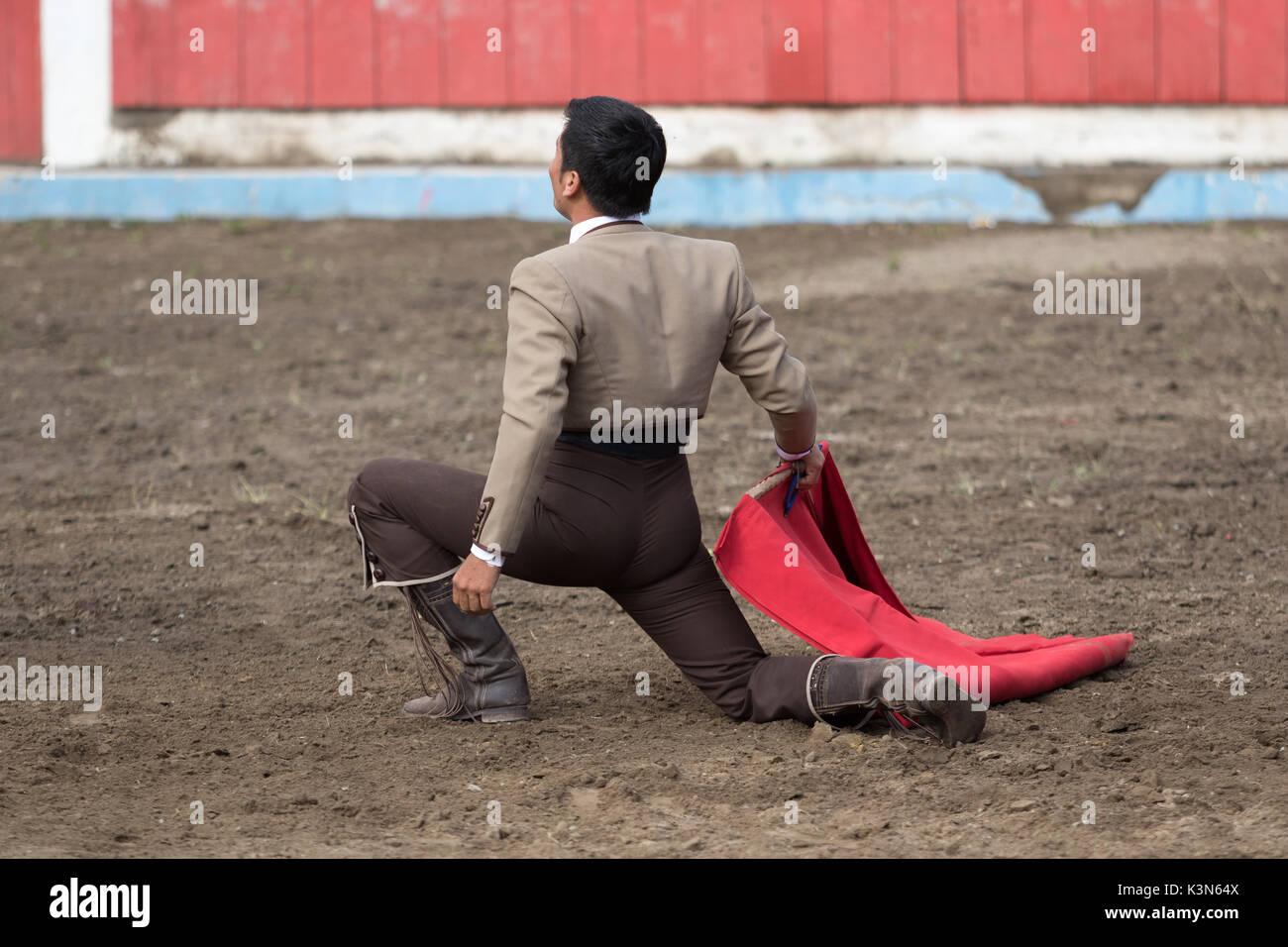 bullfighter kneeling in the arena - Stock Image
