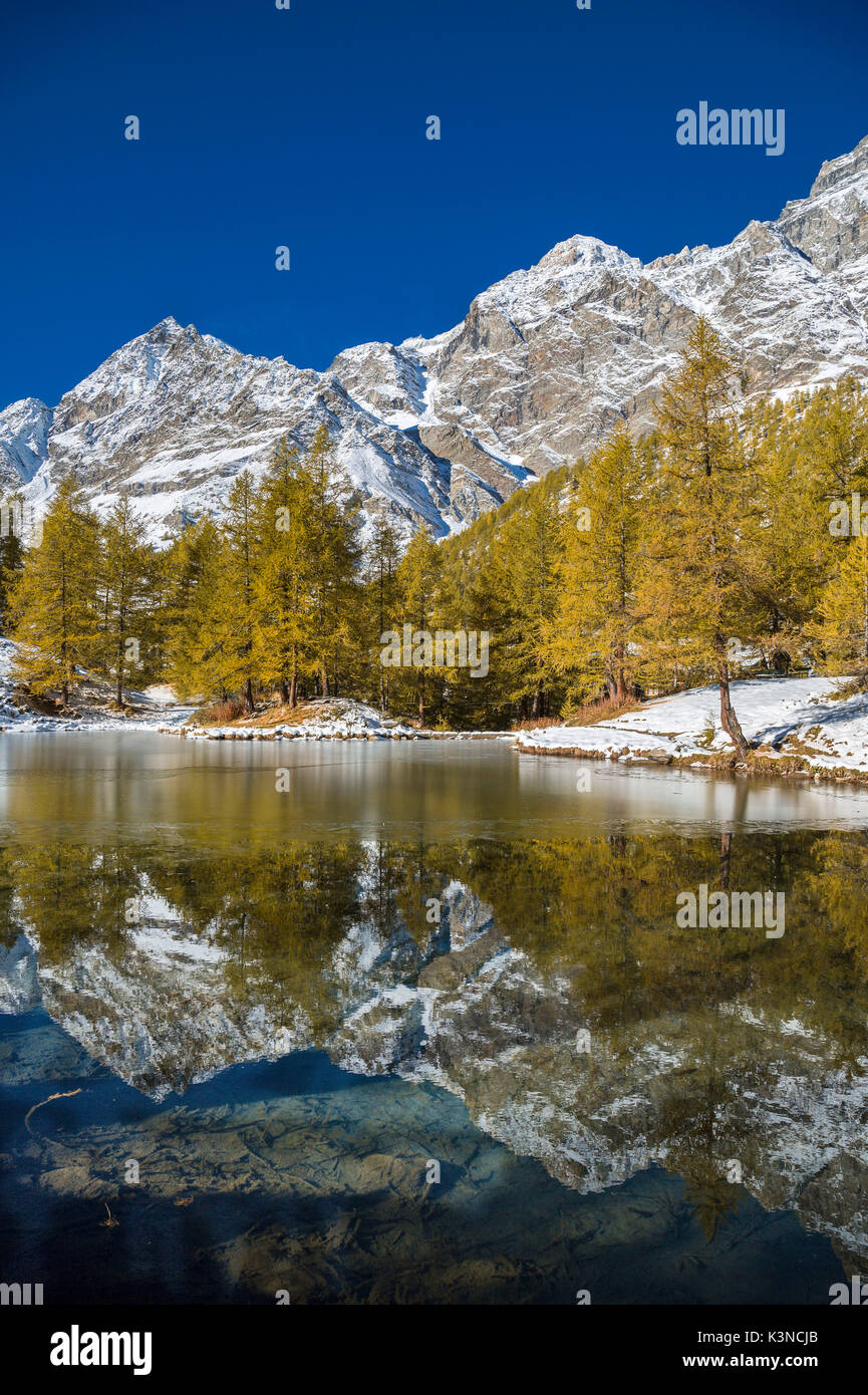 ions in the Lake Bleu in autumn (Cervinia, Valtournenche, Aosta province, Aosta Valley, Italy, Europe) - Stock Image