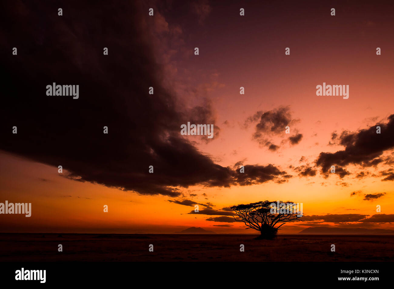 Amboseli Park,Kenya,Africa A classic African sunset, with its warm colors - Stock Image