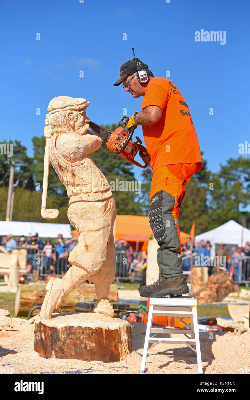 Chainsaw carved stock photos