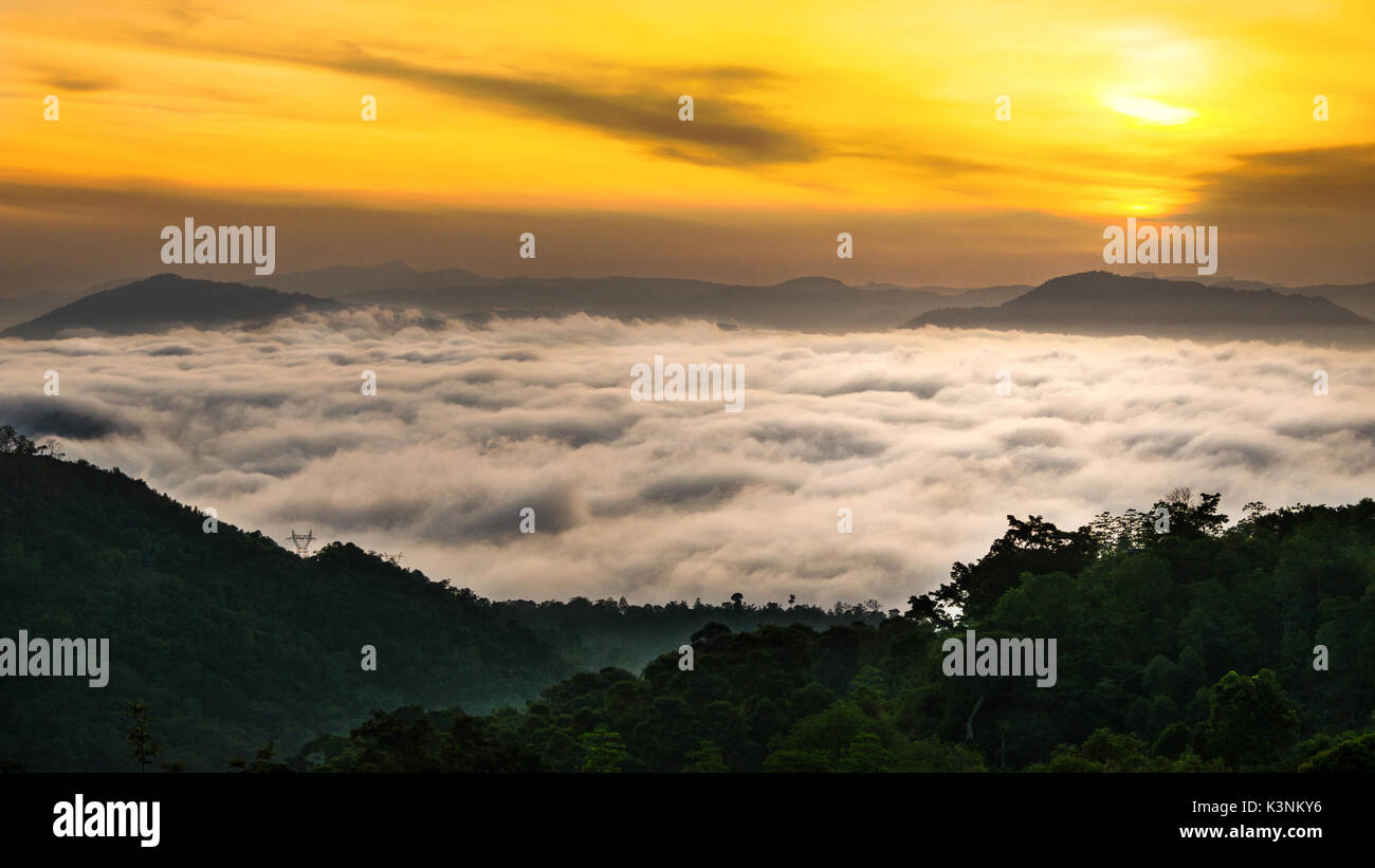 morning landscape of orange yellow sunrise above white cloud cover , forest and mountains - Stock Image