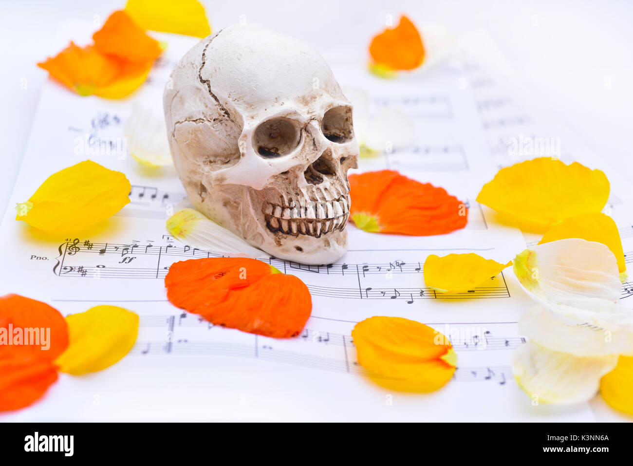 Music abstraction. Autumn texture with white small skull. Stock Photo