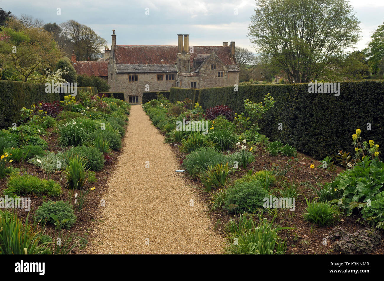 Mottistone Manor House on the Isle of Wight showing the formal gardens an stone steps with walls and symmetrical planting landscaped gardens - Stock Image