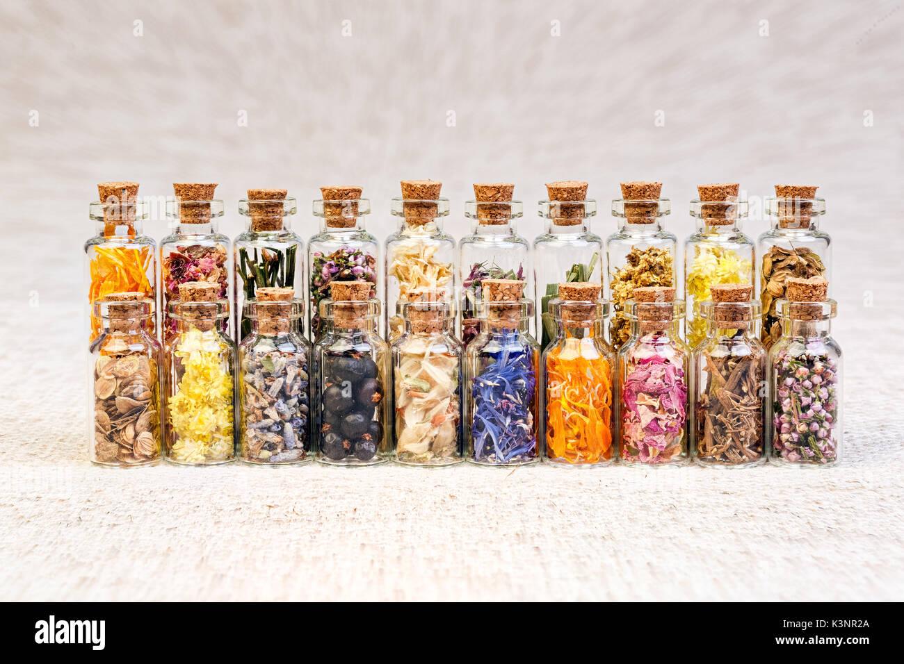 Healing herbs in glass bottles, macro photo. Stock Photo
