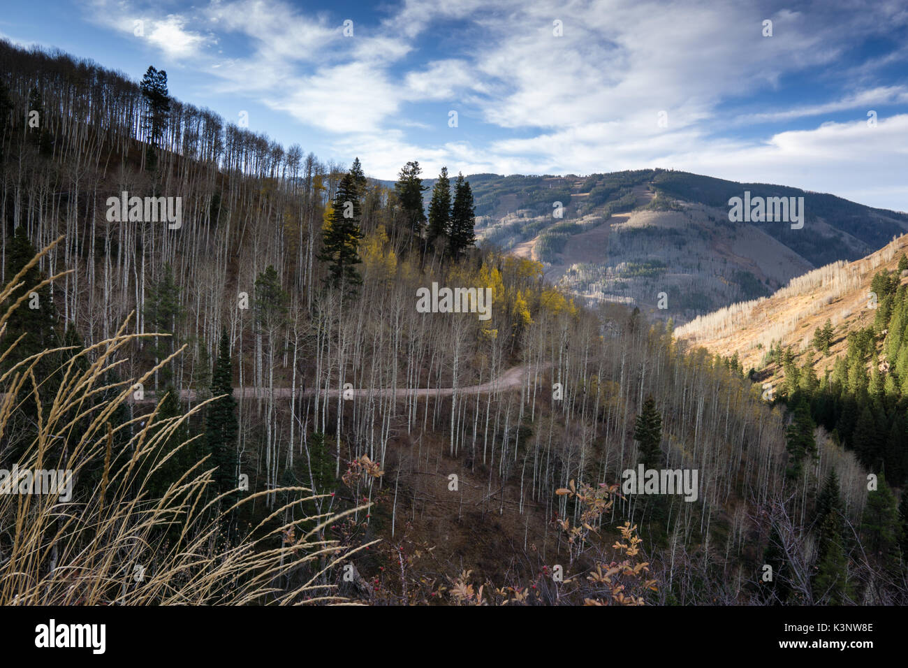 Taken from the road to Piney Lake, outside of Vail, Colorado. - Stock Image