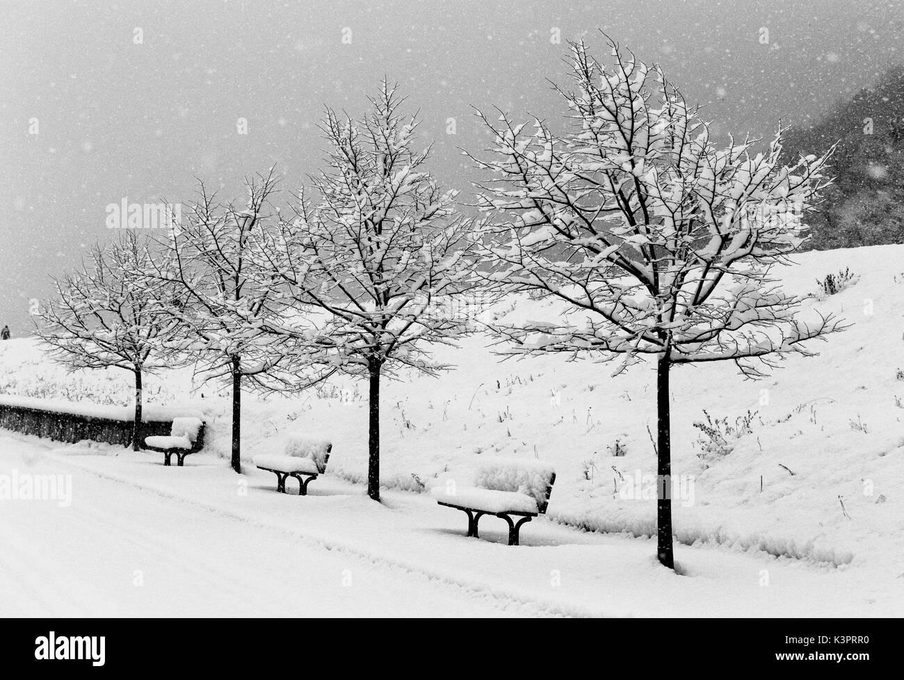 Snow fall in Siria Forcola, Valtellina, Lombardy, Italy - Stock Image