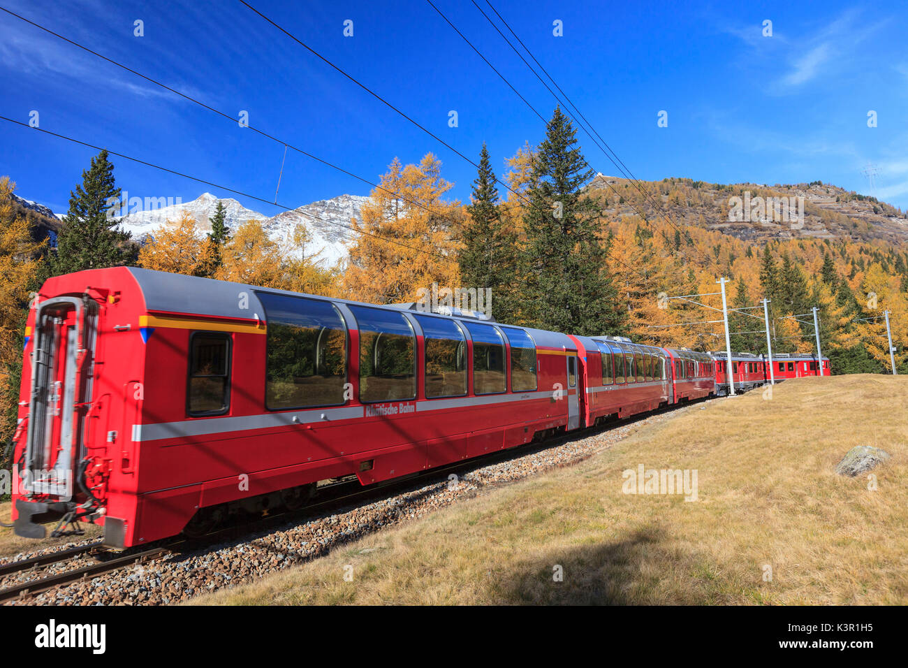 The red train of Bernina in autumn going towards Alp Grum, Val Poschiavo Switzerland Europe - Stock Image