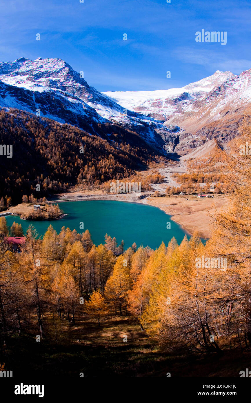 The lake of Alp Grum surrounded by autumn colors, in the background glacier Palù. Poschiavo Valley Canton of Graubünden Switzerland Europe - Stock Image