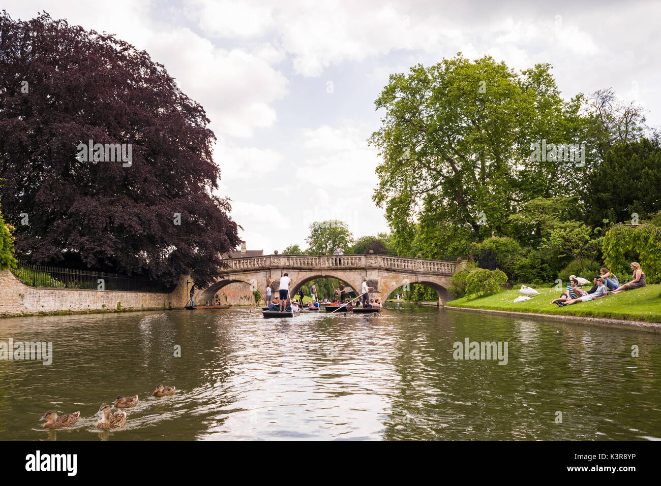 People punting on the river Cam by Clare College University during Summer, Cambridge, United Kingdom Stock Photo