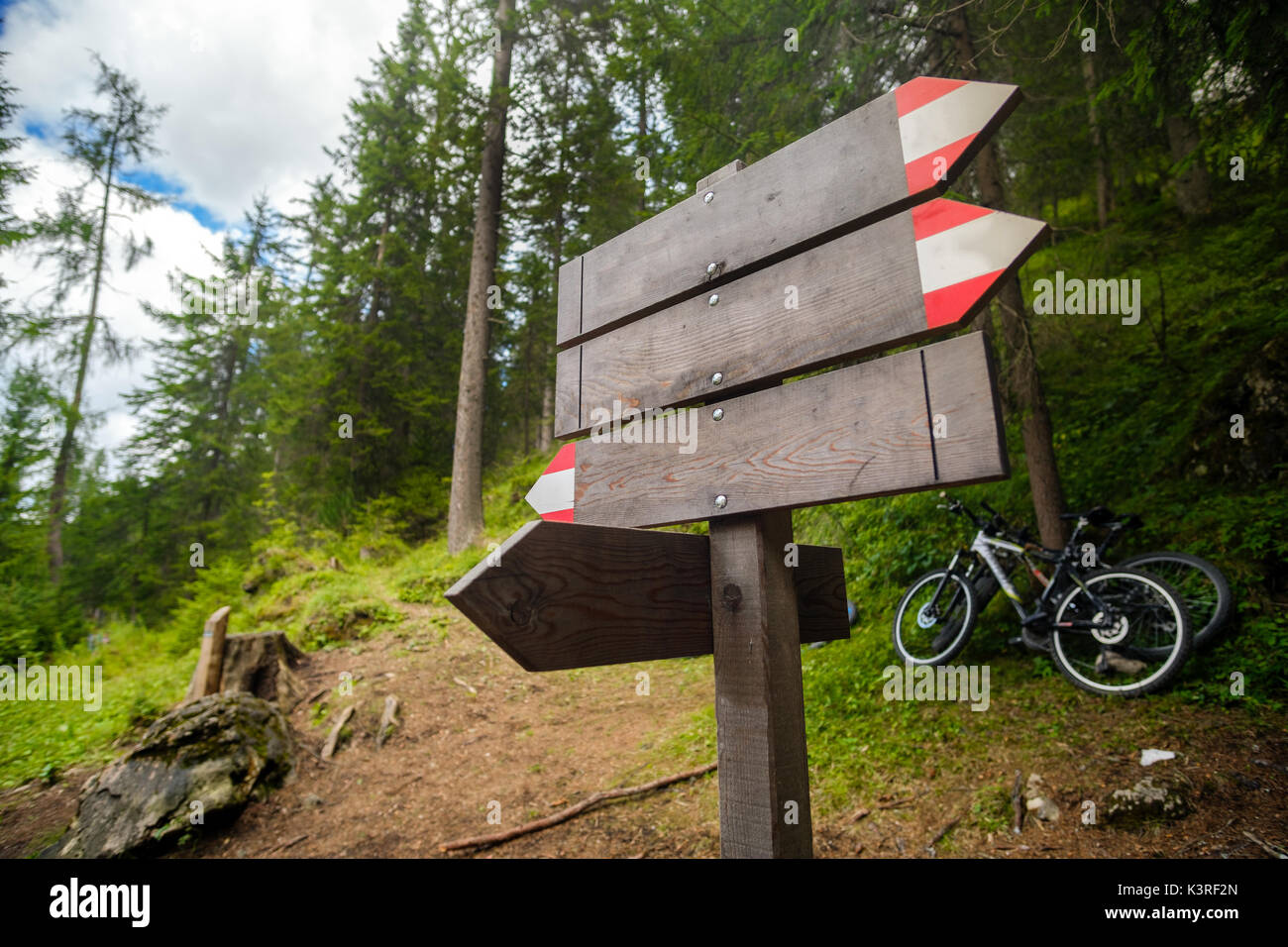 empty trail sign forest wood mountain bike - Stock Image