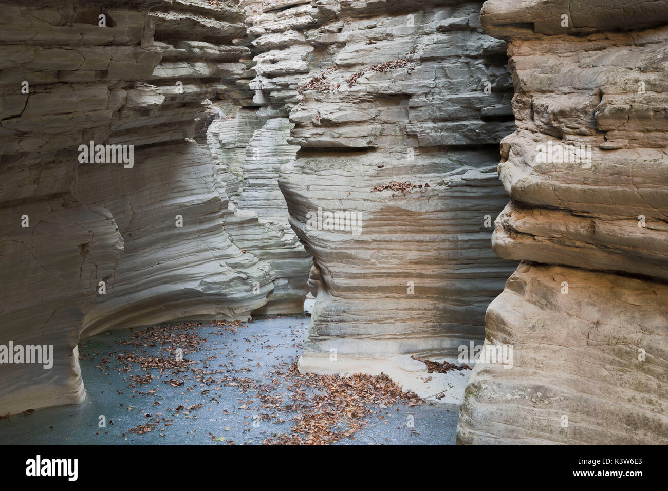 Brent de l'Art ; belluno province ; Veneto region ; Italy ; Europe - Stock Image