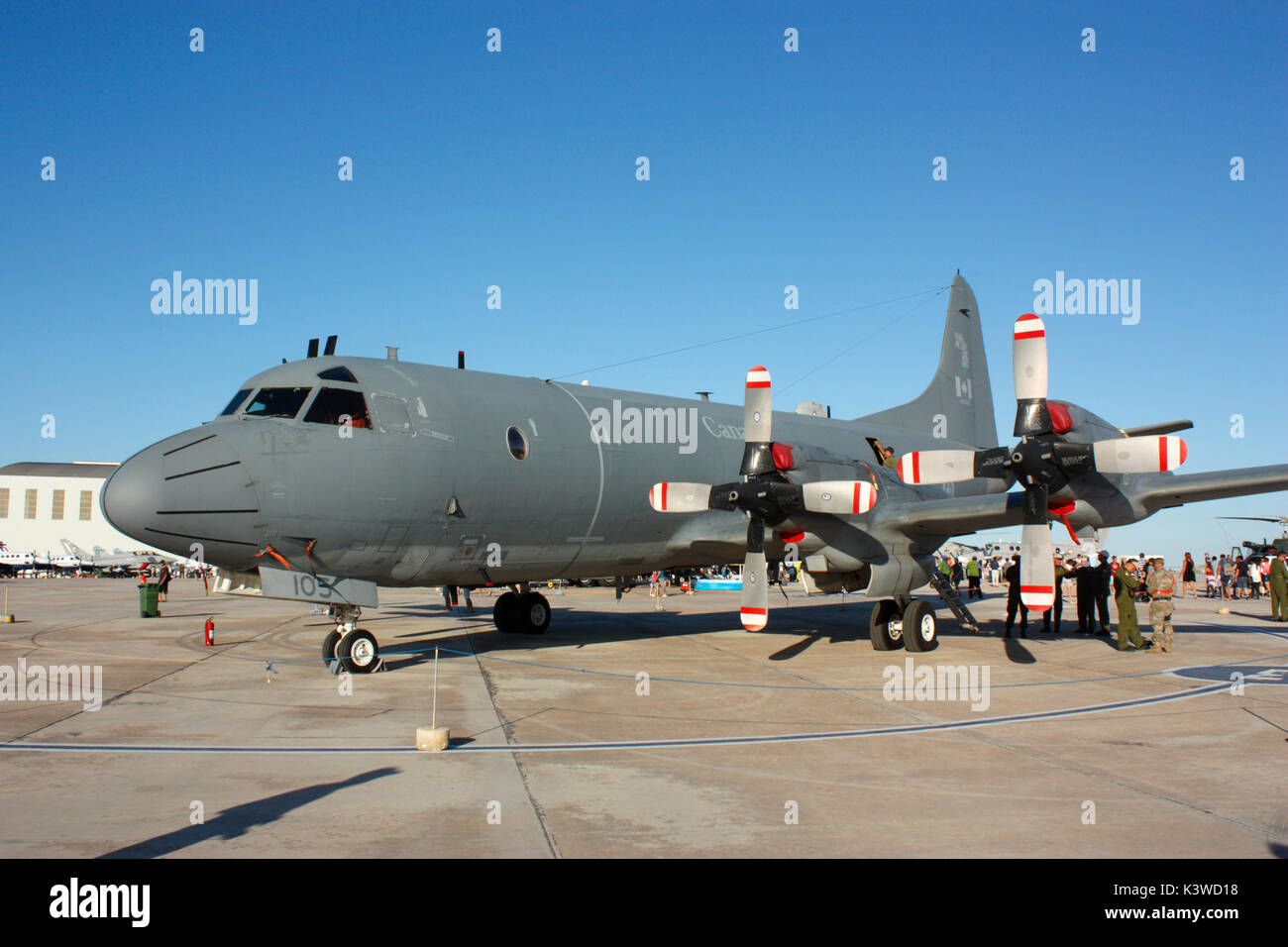 Royal Canadian Air Force Lockheed CP-140 Aurora maritime patrol aircraft (a derivative of the P-3 Orion) - Stock Image