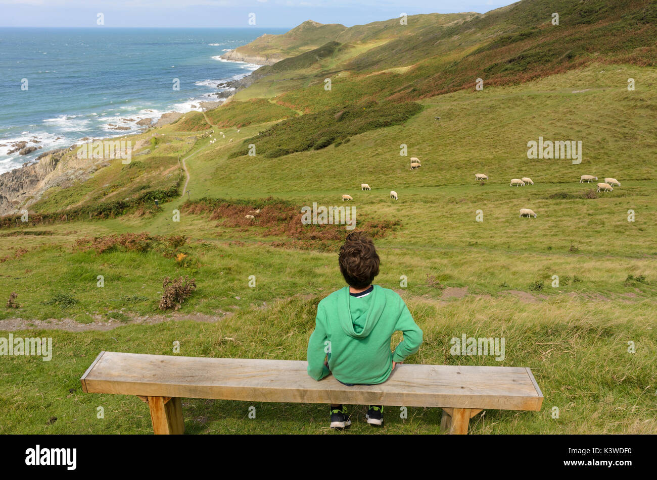 Looking out to sea, near Morthoe, North Devon. - Stock Image