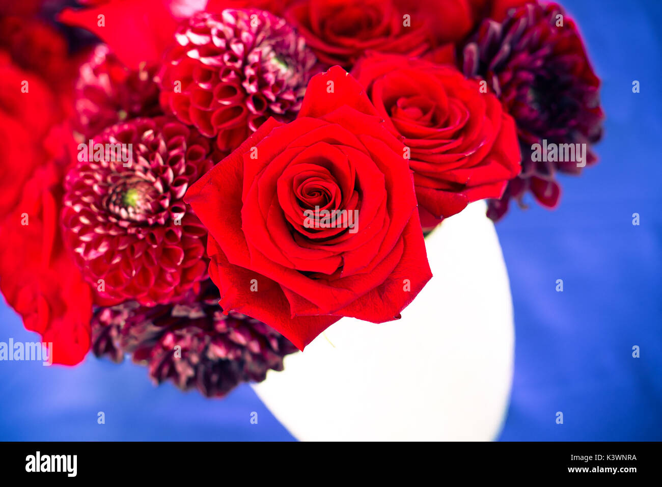 Roses and red flowers in bouquet in red white and blue color palette ...