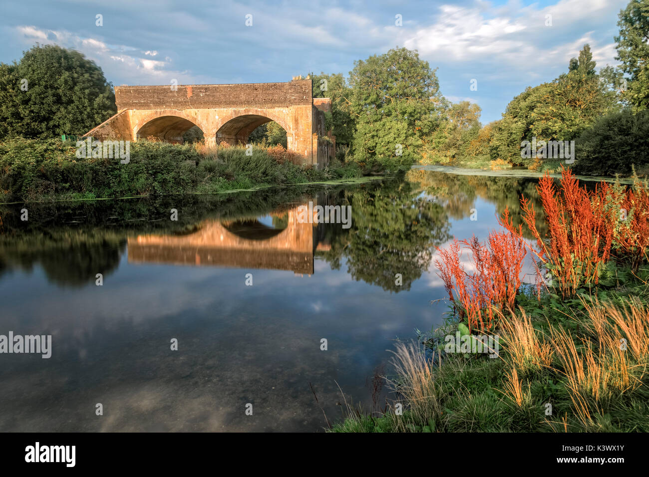 Stour Meadows, Blandford Forum, Dorset, England, UK - Stock Image
