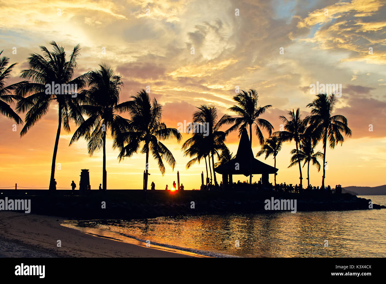 Silhouettes of palm tree during sunset in Kota Kinabalu beach, Sabah Borneo, Malaysia. Stock Photo